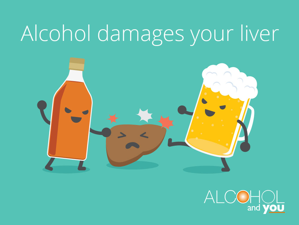 Alcohol & Your Liver - Alcohol and You Northern ...